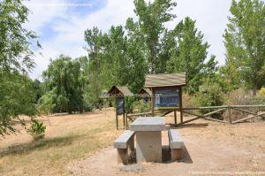 Foto Área Recreativa Puente Del Retamar 8