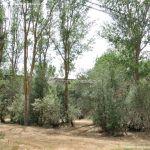 Foto Área Recreativa Puente Del Retamar 10