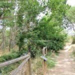 Foto Área Recreativa Puente Del Retamar 22