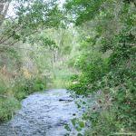 Foto Área Recreativa Puente Del Retamar 24