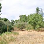 Foto Área Recreativa Puente Del Retamar 38