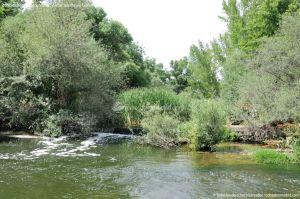 Foto Área Recreativa Puente Del Retamar 40