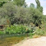 Foto Área Recreativa Puente Del Retamar 41