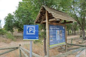 Foto Área Recreativa Puente Del Retamar 56