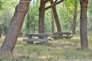 Foto Área Recreativa Arroyo Del Mediano 3