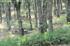 Foto Área Recreativa Fuente Del Cura 6