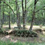 Foto Área Recreativa Fuente Del Cura 7