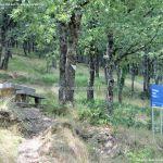 Foto Área Recreativa Fuente Del Cura 9