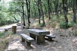 Foto Área Recreativa Fuente Del Cura 11