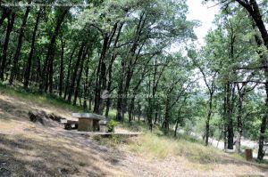 Foto Área Recreativa Fuente Del Cura 12