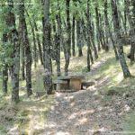 Foto Área Recreativa Fuente Del Cura 15