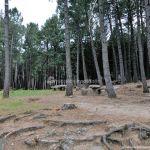 Foto Área Recreativa Zona De Canto Cochino (La Pedriza) 2