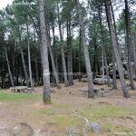 Foto Área Recreativa Zona De Canto Cochino (La Pedriza) 4