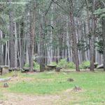 Foto Área Recreativa Zona De Canto Cochino (La Pedriza) 6