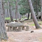 Foto Área Recreativa Zona De Canto Cochino (La Pedriza) 7