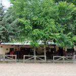 Foto Área Recreativa Zona De Canto Cochino (La Pedriza) 9