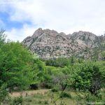 Foto Área Recreativa Zona De Canto Cochino (La Pedriza) 12