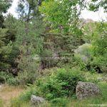 Foto Área Recreativa Zona De Canto Cochino (La Pedriza) 13