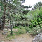 Foto Área Recreativa Zona De Canto Cochino (La Pedriza) 15