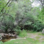 Foto Área Recreativa Zona De Canto Cochino (La Pedriza) 17
