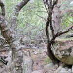 Foto Área Recreativa Zona De Canto Cochino (La Pedriza) 18
