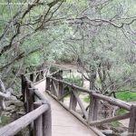 Foto Área Recreativa Zona De Canto Cochino (La Pedriza) 31
