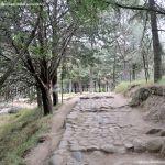 Foto Área Recreativa Zona De Canto Cochino (La Pedriza) 32