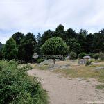 Foto Área Recreativa Zona De Canto Cochino (La Pedriza) 37