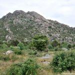 Foto Área Recreativa Zona De Canto Cochino (La Pedriza) 39