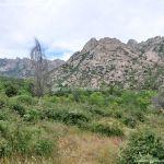 Foto Área Recreativa Zona De Canto Cochino (La Pedriza) 40