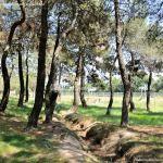 Foto Área Recreativa El Berzalejo 13