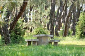 Foto Área Recreativa El Berzalejo 14