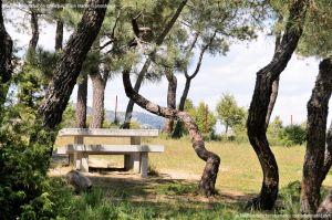 Foto Área Recreativa El Berzalejo 29
