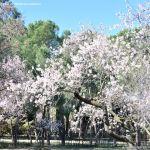 Foto Parque Quinta de los Molinos 12