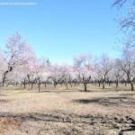 Foto Parque Quinta de los Molinos 13