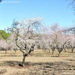 Foto Parque Quinta de los Molinos 15