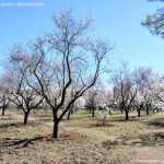 Foto Parque Quinta de los Molinos 19