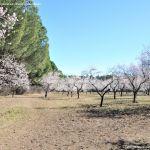 Foto Parque Quinta de los Molinos 20