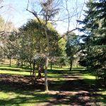 Foto Parque Quinta de los Molinos 31