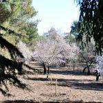 Foto Parque Quinta de los Molinos 34