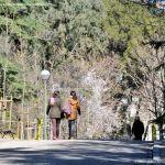 Foto Parque Quinta de los Molinos 36