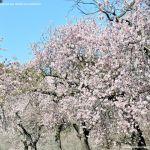 Foto Parque Quinta de los Molinos 39
