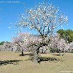 Foto Parque Quinta de los Molinos 40