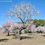 Foto Parque Quinta de los Molinos 43