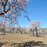 Foto Parque Quinta de los Molinos 45