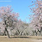 Foto Parque Quinta de los Molinos 48