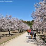 Foto Parque Quinta de los Molinos 50