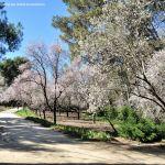 Foto Parque Quinta de los Molinos 52