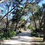 Foto Parque Quinta de los Molinos 53