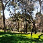 Foto Parque Quinta de los Molinos 58